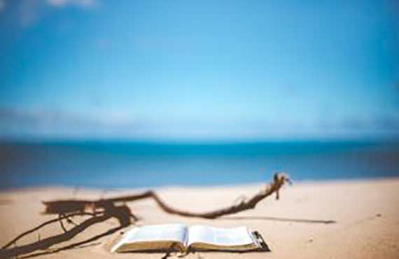 MORE (NOT NECESSARILY) BEACH READING